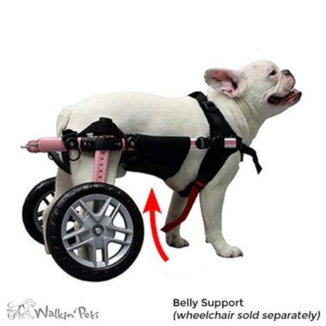 Dog Wheelchair And Cart Comparisons Choosing A Dog Wheelchair