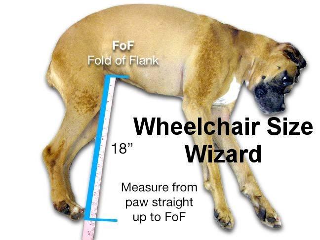 Dog Wheelchair and Cart Comparisons, choosing a dog wheelchair