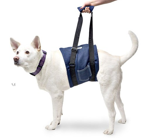 This Support Dog Sling Is Designed To Your Pet With Ease And Protect Back From Unnecessary Strain Lift Ist Larger Dogs